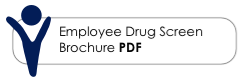 Our Employee Drug Screen Brochure